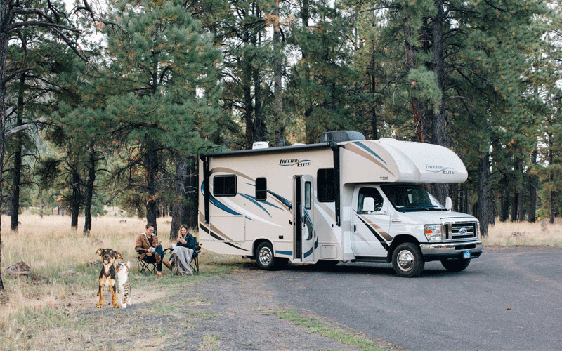 Tips for RVing With Your Pet
