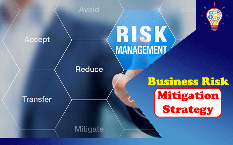Business Risk Mitigation Strategy