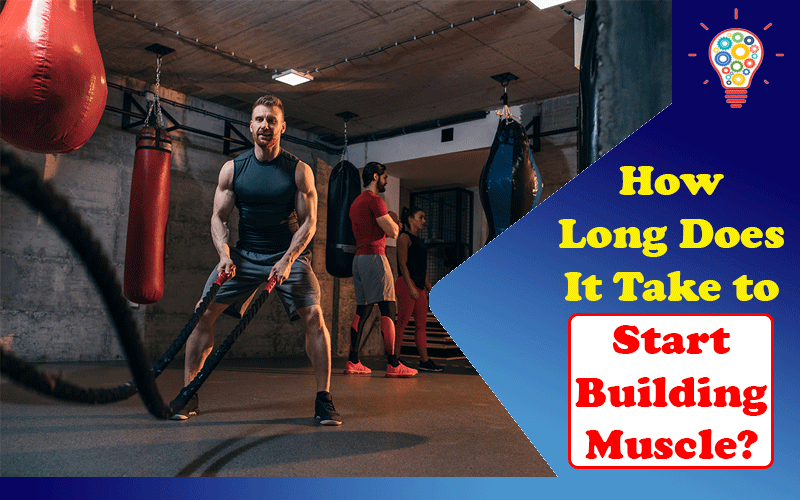 How Long Does It Take to Start Building Muscle
