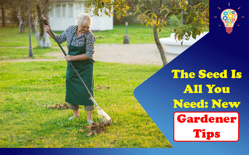 The Seed Is All You Need: New Gardener Tips